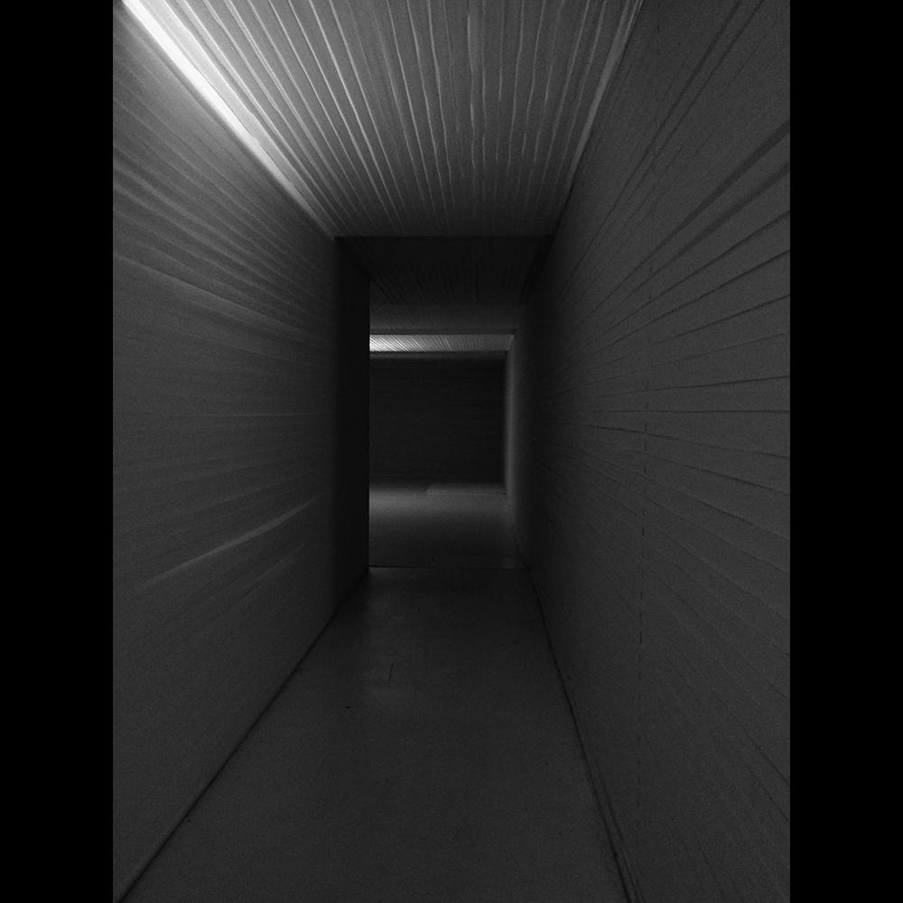 Exploration of Light VI